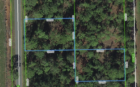 641 Western Blvd, Lake Placid, FL 33852
