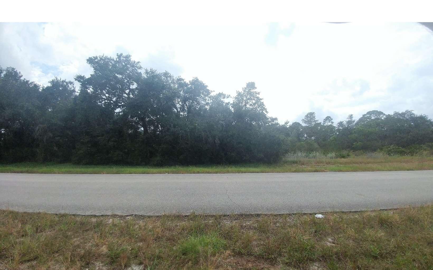 310 Nichele Blvd, Lake Placid, FL 33852