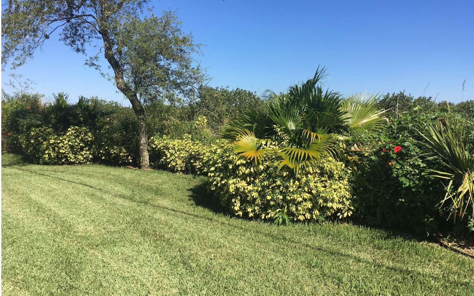 146 Woodside Dr, Lake Placid, FL 33852