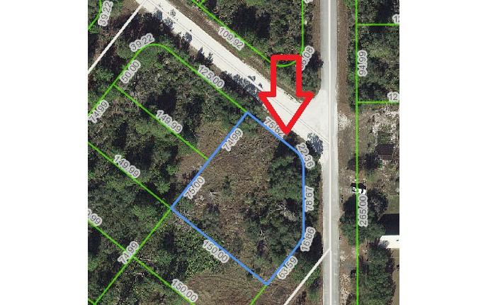 216 Dewolf Ave, Lake Placid, FL 33852