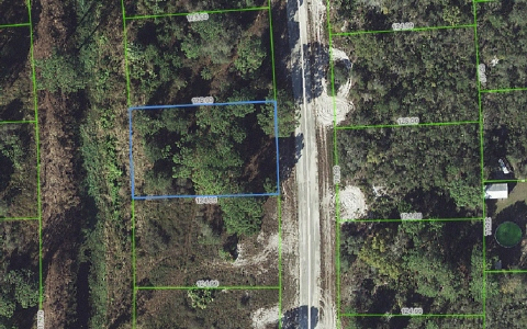 245 E Canal Way Ne, Lake Placid, FL 33852