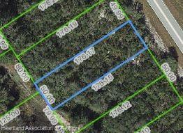907 County Road 29 Road, Lake Placid, FL 33852