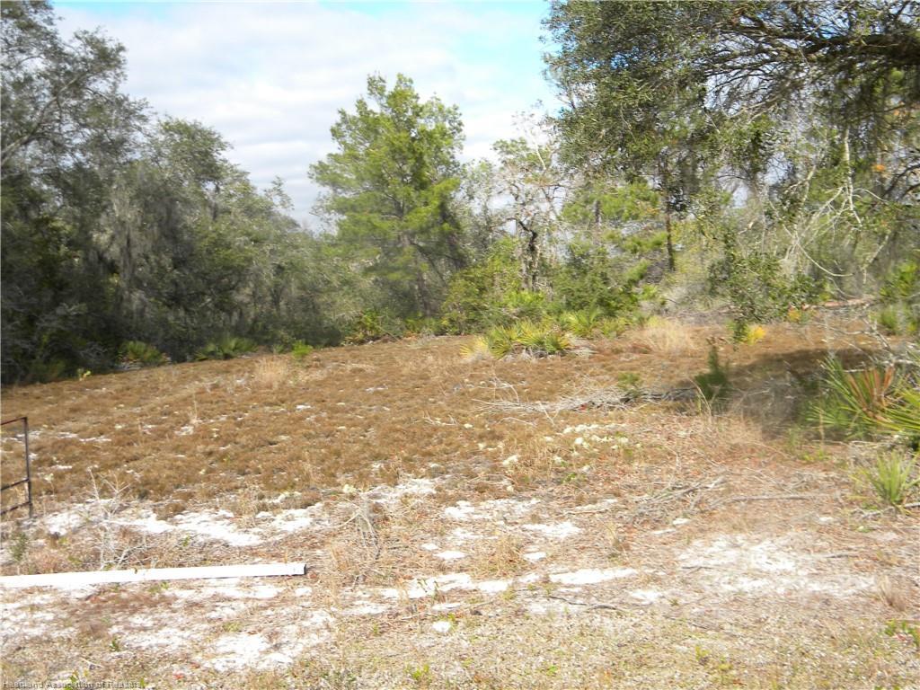 1254 Cr 621 E Road, Lake Placid, FL 33852