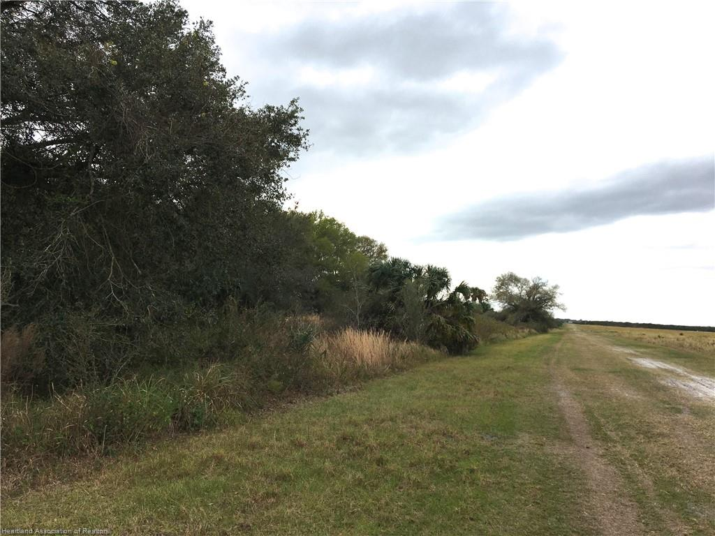 Mineral Branch Road, Zolfo Springs, FL 33890