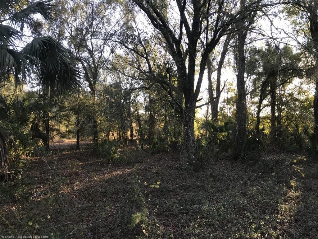 1341 Bagwell Drive, Zolfo Springs, FL 33890
