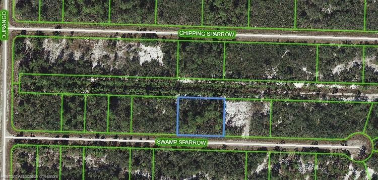 3335 Swamp Sparrow Avenue, Lake Placid, FL 33852