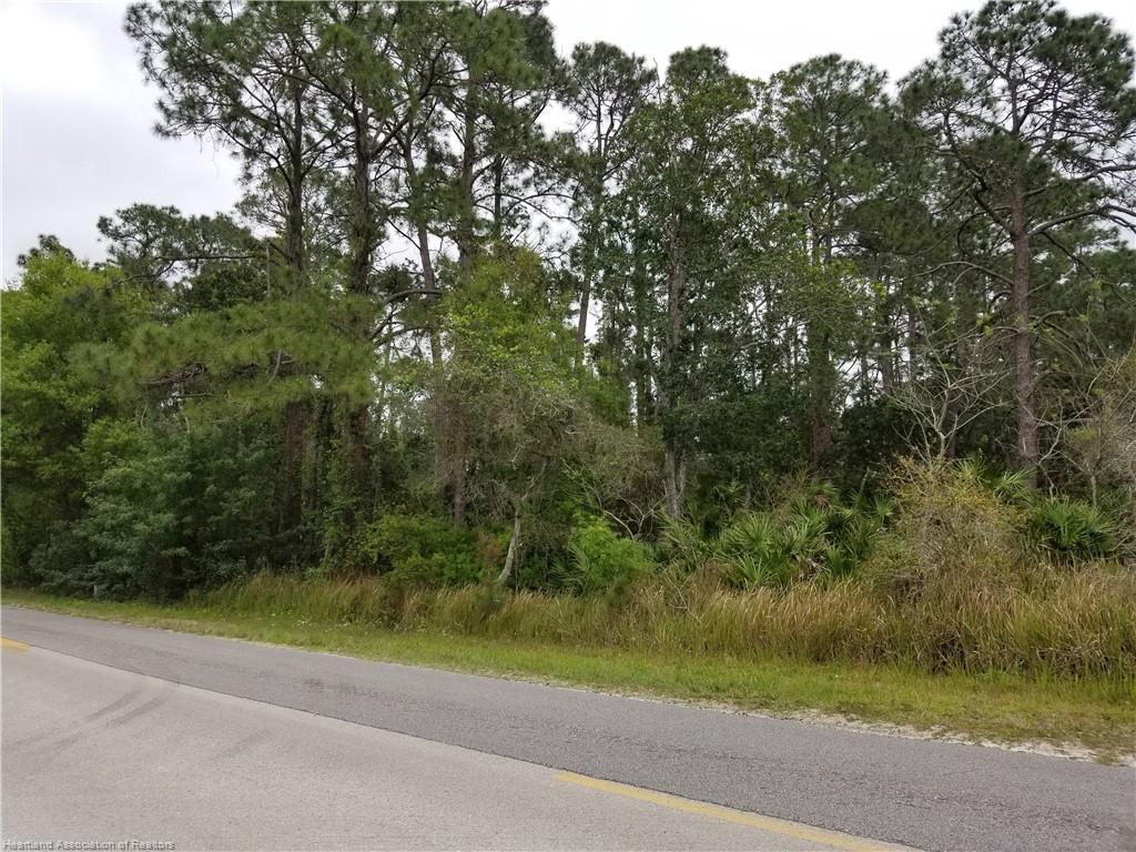 4356 E Old Bombing Range Road, Avon Park, FL 33825