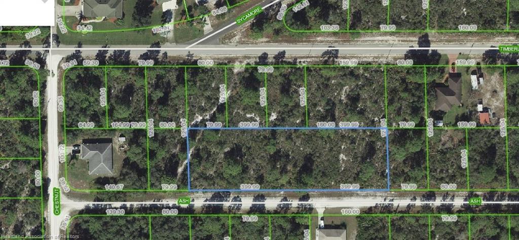 3017 Ash Avenue, Lake Placid, FL 33852