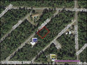 1057 Cellini Street, Lake Placid, FL 33852