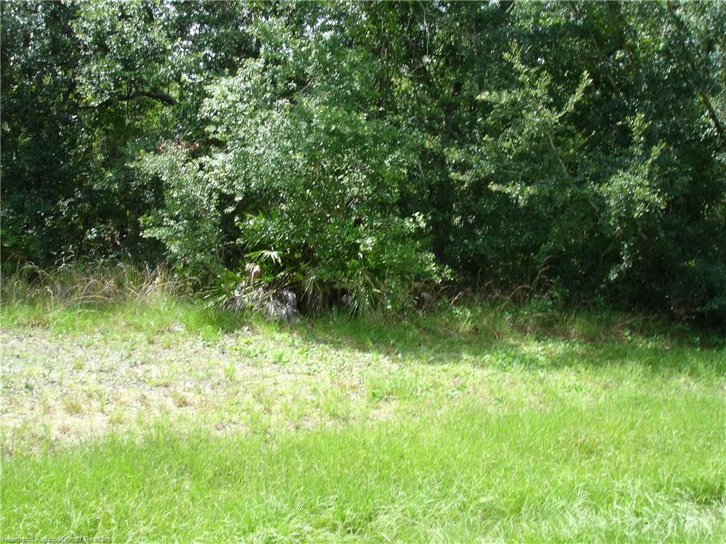 4542 Apache Trail, Wauchula, FL 33873
