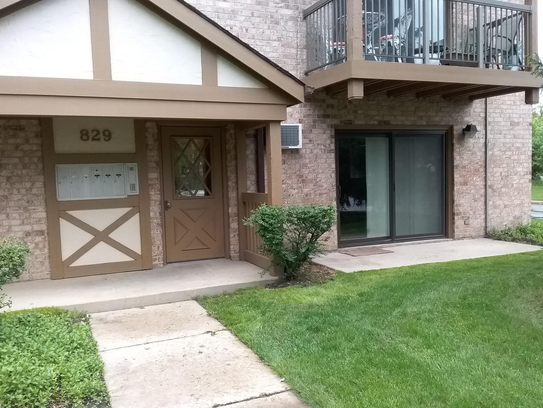 829 S Dwyer Avenue, Arlington Heights, IL 60005