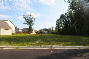 436 Arbor Lane, Wood Dale, IL 60191