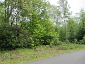 H2 Wolf Hollow Rd, Lake Harmony, PA 18624