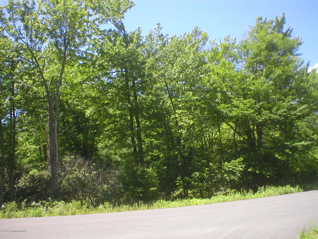 H14 Wolf Hollow Rd, Lake Harmony, PA 18624