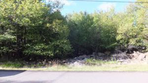 96 Elk Rd, Blakeslee, PA 18610