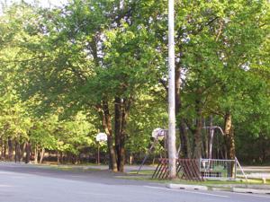 114 Blueberry Run, Blakeslee, PA 18610