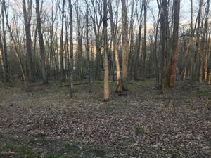 2241 Mountain Ash Ln, White Haven, PA 18661