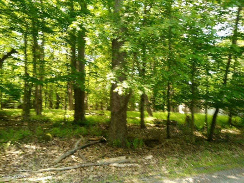Ridge Rd, Pocono Lake, PA 18347