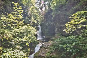 2166 Oak Hill Dr, Buck Hill Falls, PA 18323