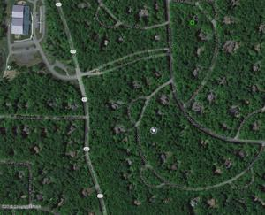 Lot 36 Crocketts Crescent, Pocono Pines, PA 18350