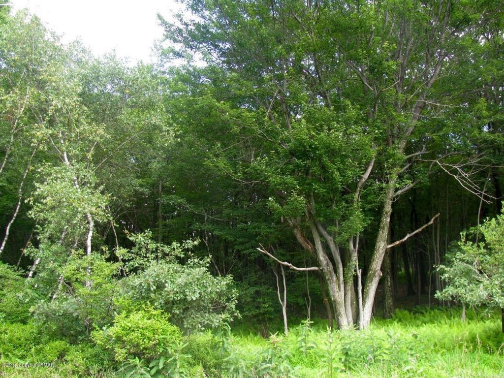 Lot #862 Secamore Lane, Long Pond, PA 18334