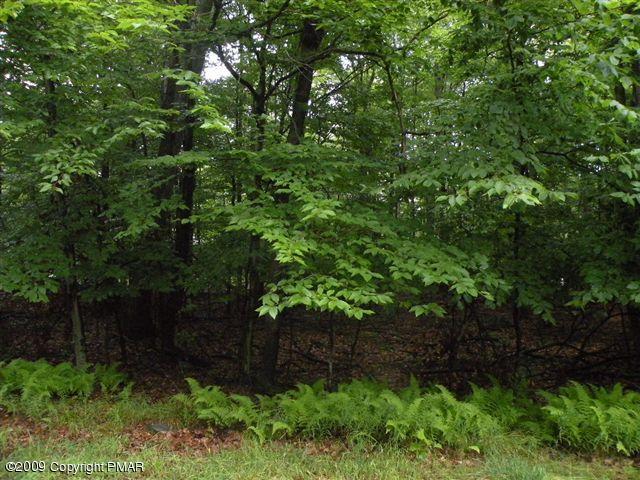 1512 Woods End Rd, Pocono Lake, PA 18347