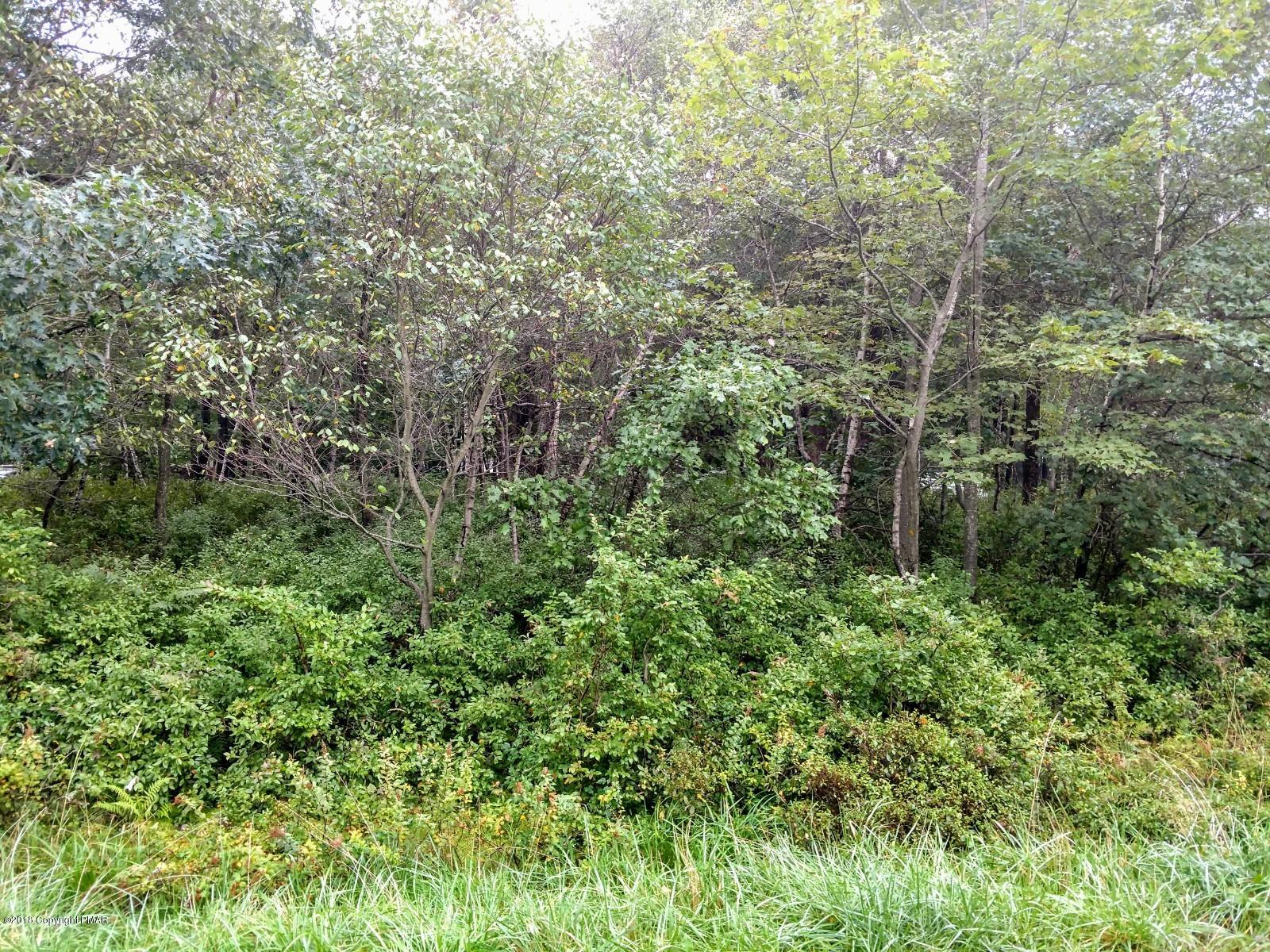 Lot 5910 Mountain Laurel (wild Laurel) Dr, Long Pond, PA 18334