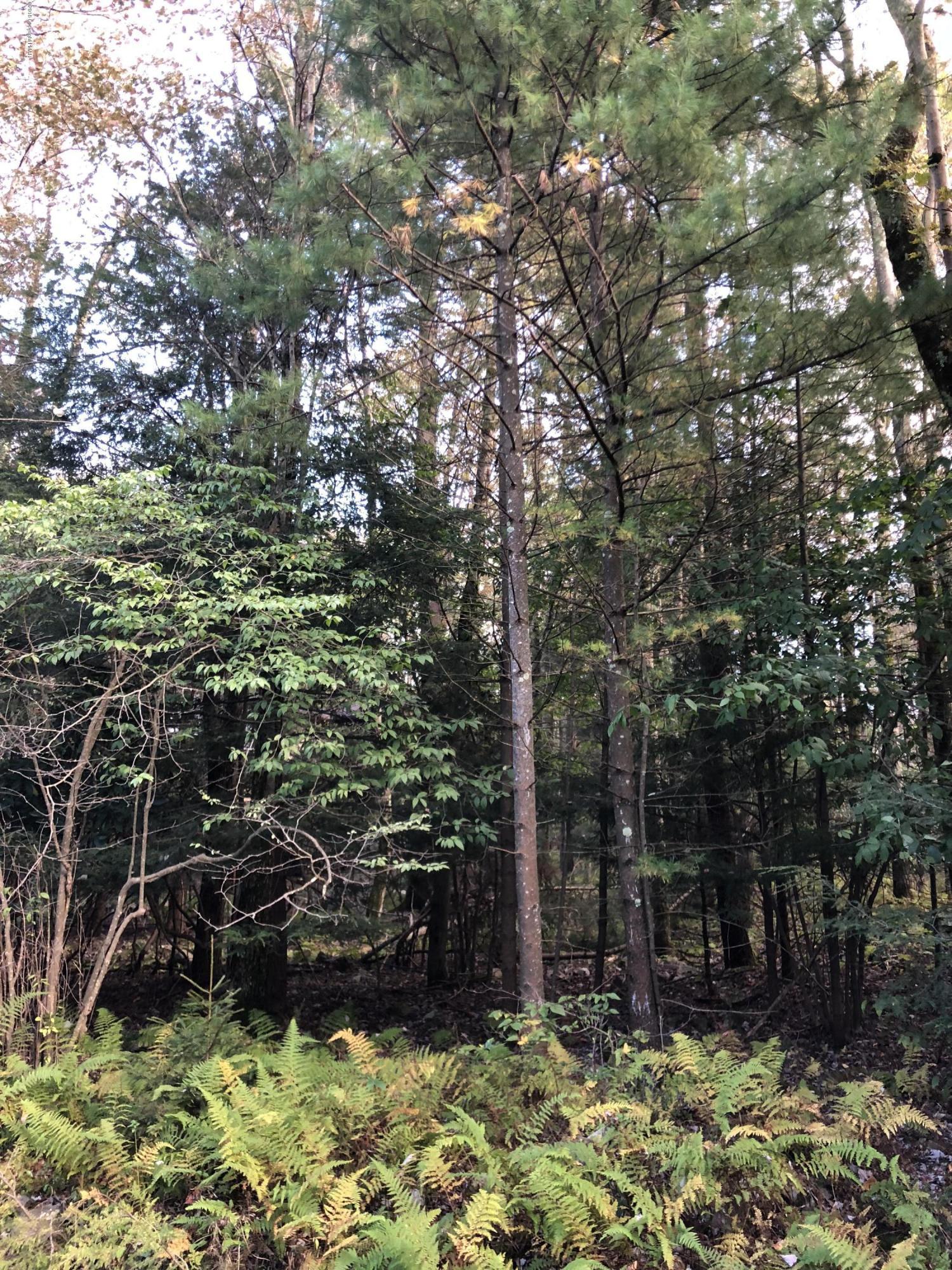 Tanglewood Dr, Pocono Pines, PA 18350