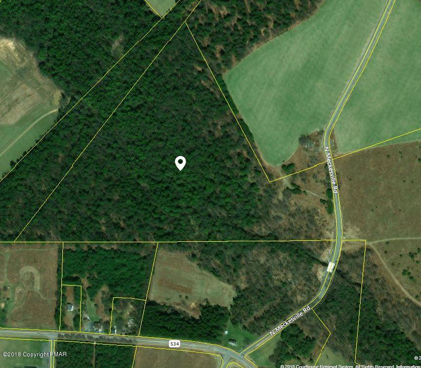 N Meckesville Rd, Albrightsville, PA 18210
