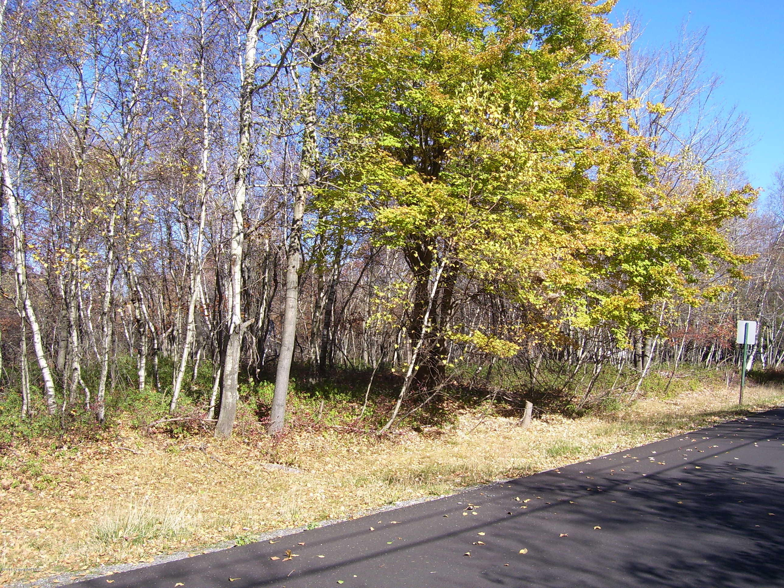 62 Buck Hill Rd, Blakeslee, PA 18610