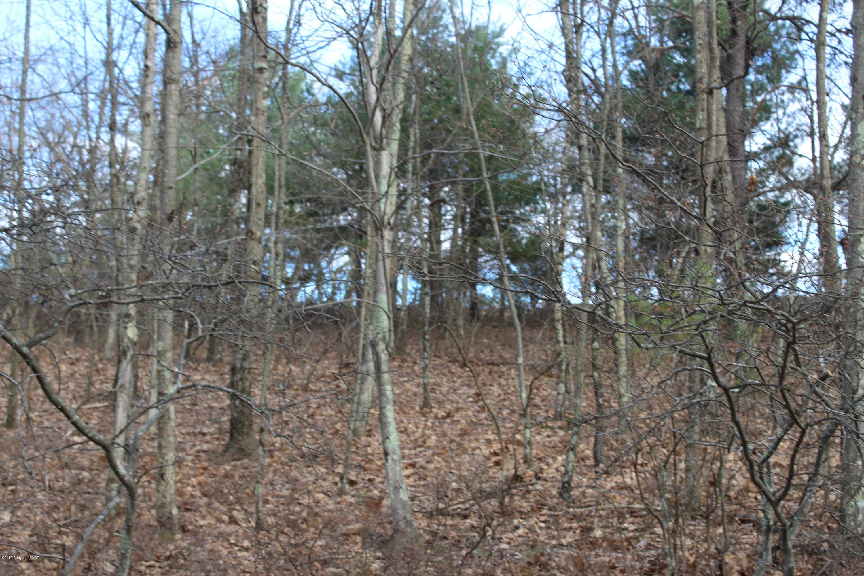 Lot 31 Section 5a, Bushkill, PA 18324