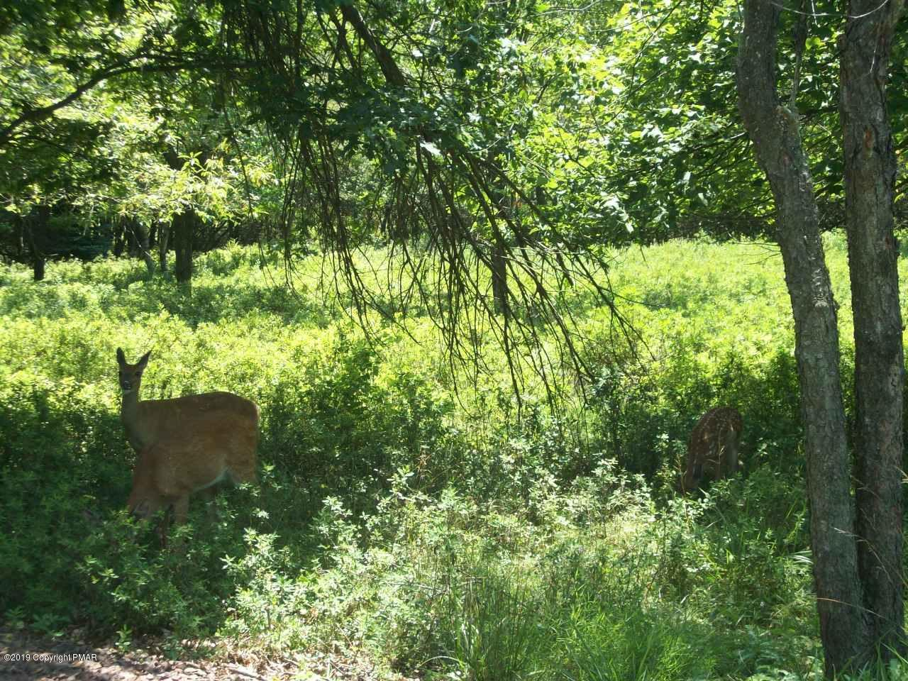C1599 Masters Trail, Albrightsville, PA 18210