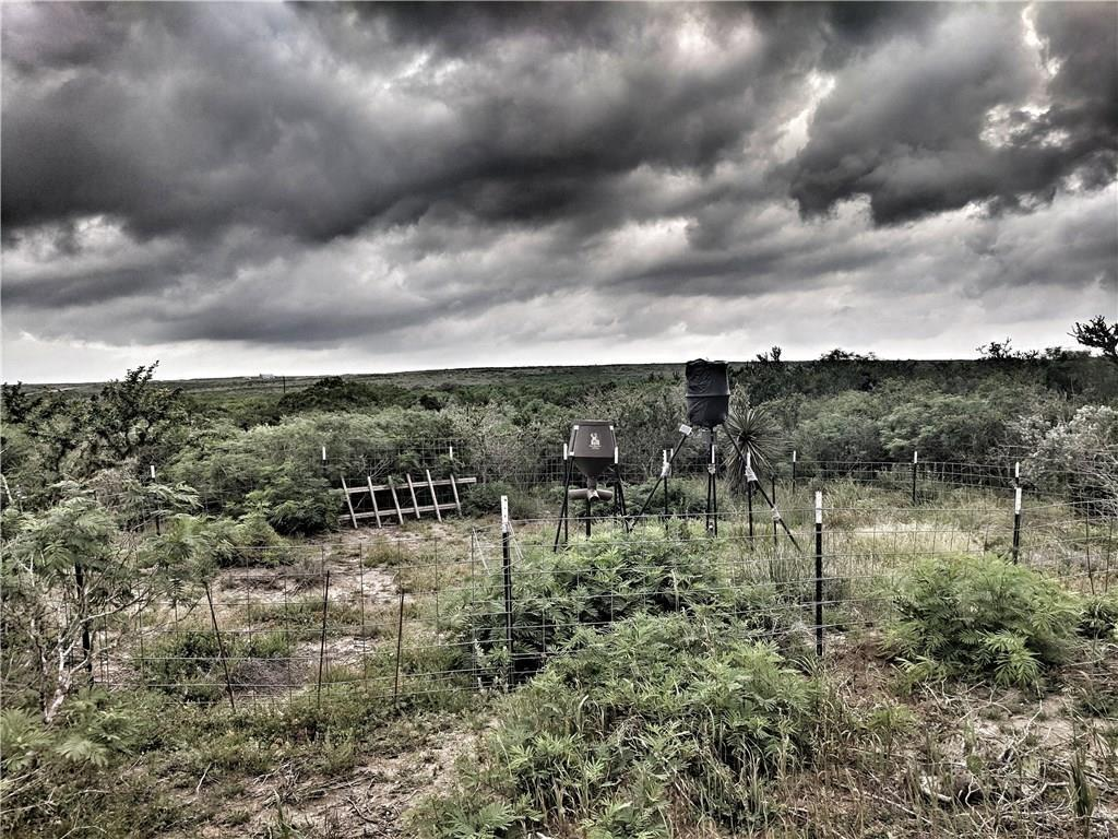00 Coyote Dr, George West, TX 78022