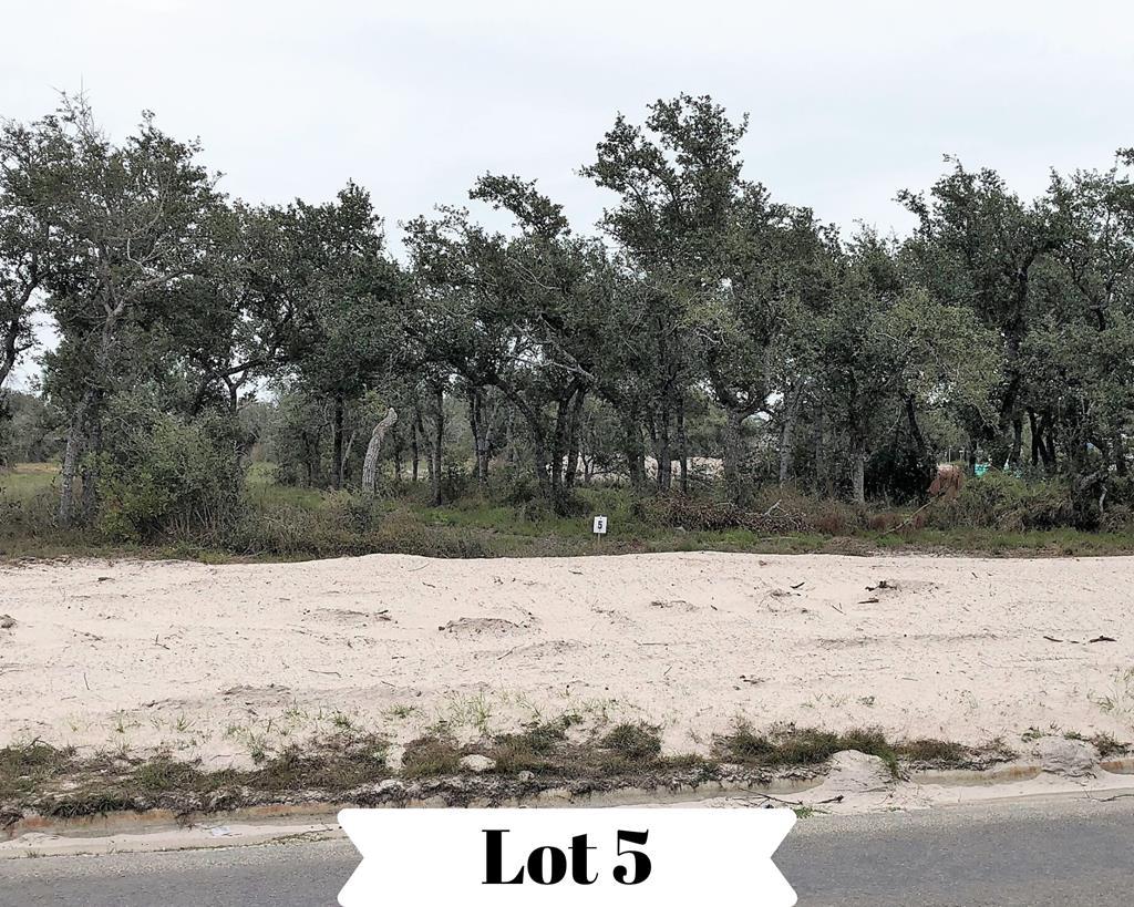 1306 1306 W. Nelson Ave., Aransas Pass, TX 78336