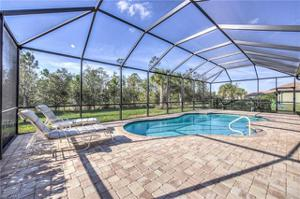 20498 Black Tree Ln, Estero, FL 33928