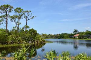 24340 Woodsage Dr, Bonita Springs, FL 34134