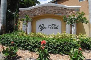 10213 South Golden Elm Dr, Estero, FL 33928