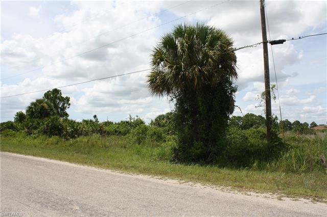 849 Colyer St E, Lehigh Acres, FL 33974