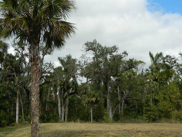 12340 Hammock Creek Way, Fort Myers, FL 33905