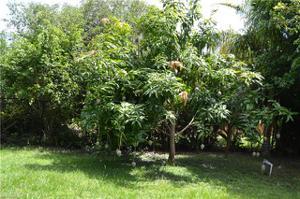 1814 Sw 25th Ter, Cape Coral, FL 33914