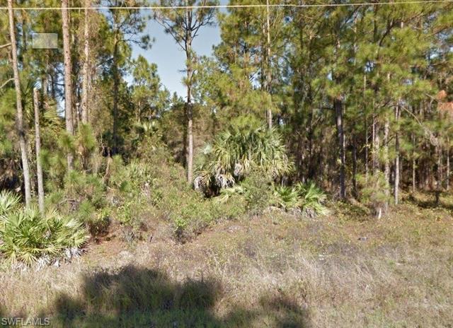 909 Alexander St, Lehigh Acres, FL 33974
