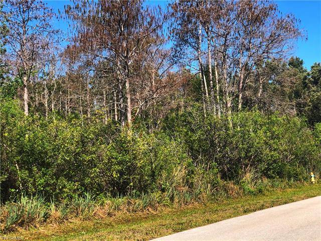 24410 Melaine Ln, Bonita Springs, FL 34135