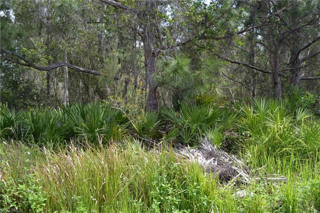 13680 Ficus Tree Ln, Bokeelia, FL 33922