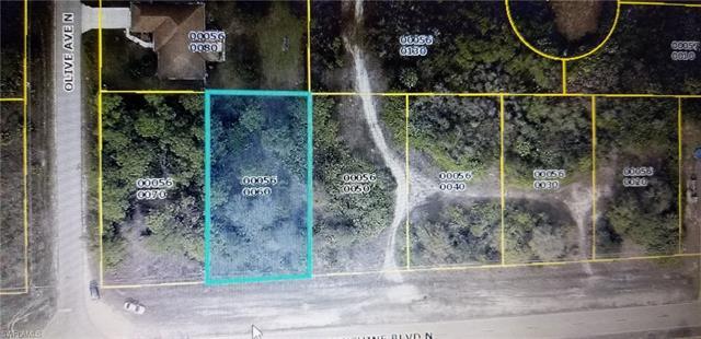 3119 Sunshine Blvd, Lehigh Acres, FL 33971