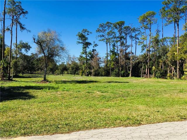 18511 Telegraph Creek Ln, Alva, FL 33920