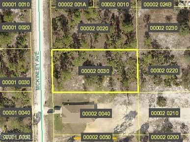 1618 Mckinley Ave, Lehigh Acres, FL 33972