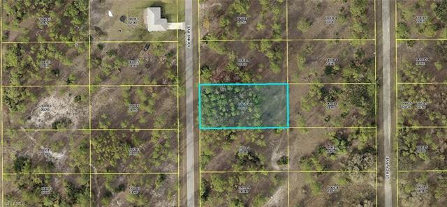 1310 Johns Ave, Lehigh Acres, FL 33972