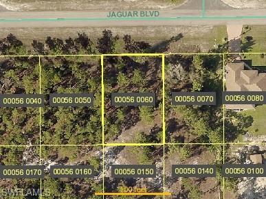 746 Jaguar Blvd, Lehigh Acres, FL 33974