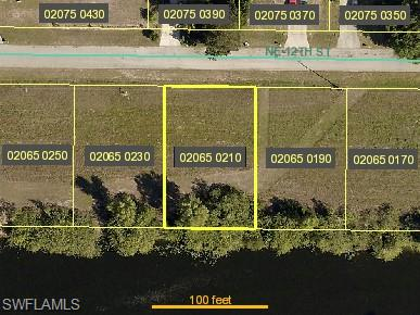 1118 Ne 12th St, Cape Coral, FL 33909
