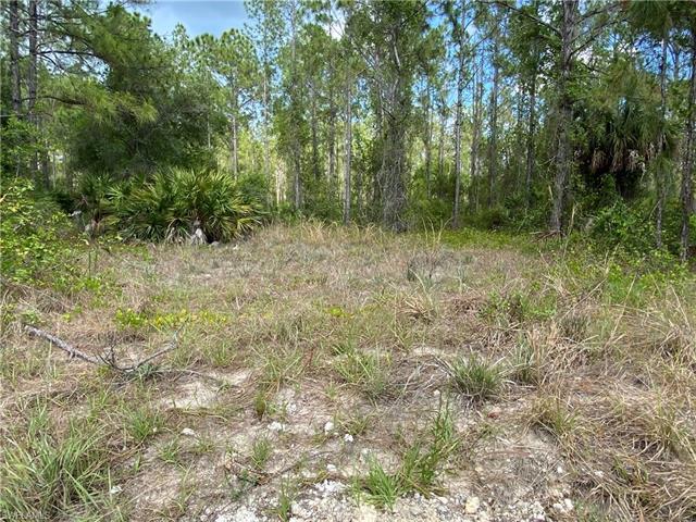 1210 Calvin Ave, Lehigh Acres, FL 33972